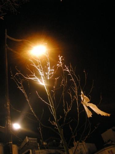 nuit .jpg