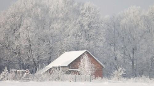 Décembre 2010.jpg