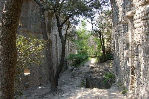 a_l_interieur_des_ruines_du_chateau.jpg