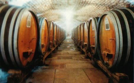 tonneaux vin.jpg