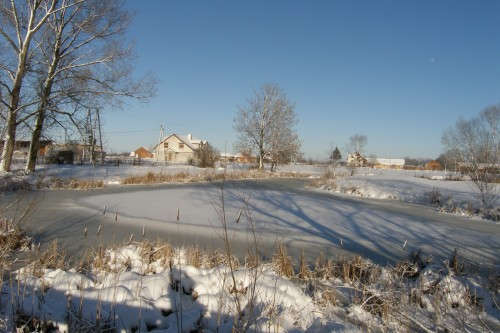 petite mare gelée.JPG